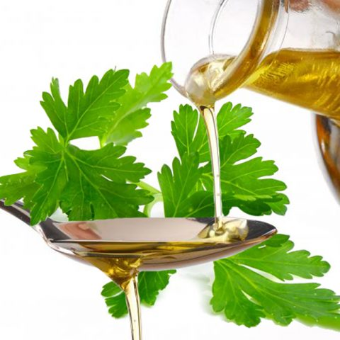 Vegetable care? Discover the properties of parsley seed oil